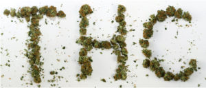 The word THC spelled out in Cannabis